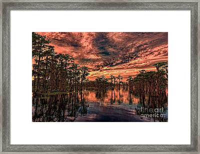 Majestic Cypress Paradise Sunset Framed Print