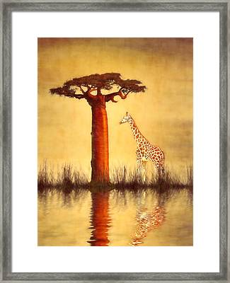 Majestic Dawn Framed Print by Sharon Lisa Clarke