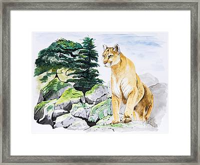 Majestic Domain Framed Print