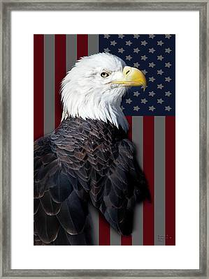 Majestic Freedom Framed Print