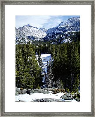 Majestic Framed Print by Lindsay Felty