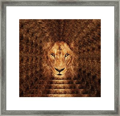 Majestic Lion Framed Print by Anton Kalinichev