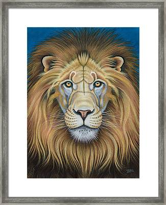 The Lion's Mane Attraction Framed Print