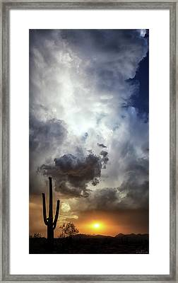 Framed Print featuring the photograph Majestic by Rick Furmanek
