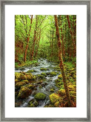 Majestic Stream Framed Print by Tyra  OBryant