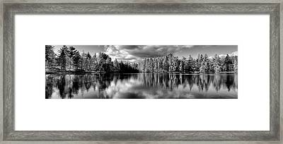 Majestic Tamaracks Framed Print by David Patterson