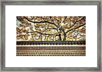 Majestic Tree Framed Print