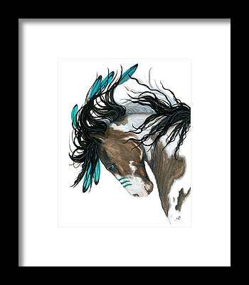 Pinto Horse Framed Prints