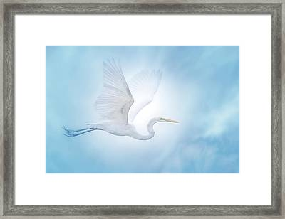 Majesty Of The Skies Framed Print by Mark Andrew Thomas