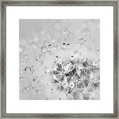 Make A Wish For The Day Framed Print by Masako Metz