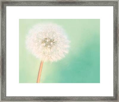 Framed Print featuring the photograph Make A Wish - Large by Amy Tyler