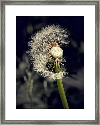Make A Wish Framed Print by Odd Jeppesen