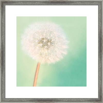 Make A Wish - Square Version Framed Print by Amy Tyler