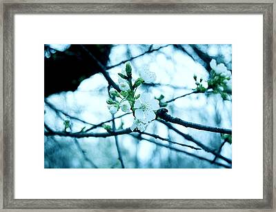 Make Me Laugh Make Me Smile - Deep Cut Gardens Framed Print