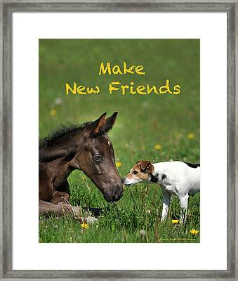 Make New Friends Framed Print