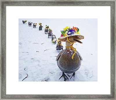 Make Way For Ducklings A Little Early For The Spring Bonnets Framed Print by Toby McGuire