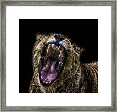 Making A Noise Framed Print by Martin Newman
