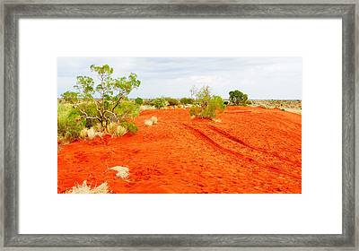 Making Tracks In The Dunes - Red Centre Australia Framed Print