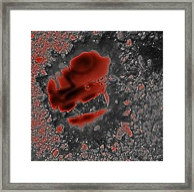 Mal-ice Of Four Thoughts Framed Print by Alpha Pup