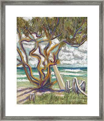 Malaekahana Tree Framed Print by Patti Bruce - Printscapes