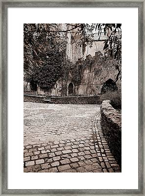 Malahide Castle Grounds Framed Print