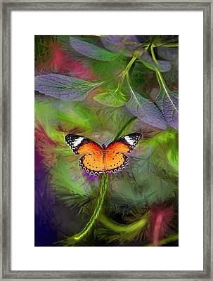 Framed Print featuring the digital art Malay Lacewing  What A Great Place by James Steele
