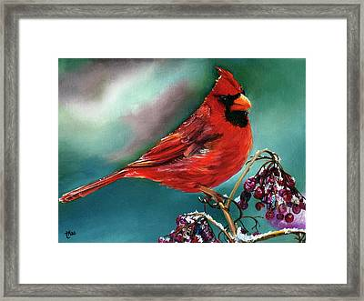 Male Cardinal And Snowy Cherries Framed Print