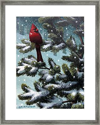 Male Cardinal Framed Print by Mark Mittlesteadt