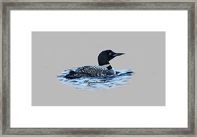 Male Mating Common Loon Framed Print