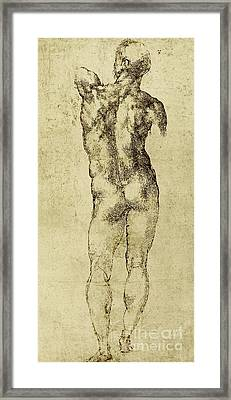Male Nude Framed Print by Michelangelo