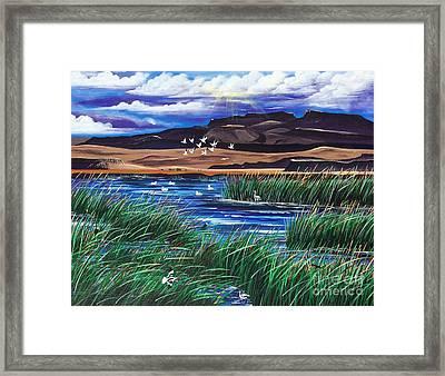 Malhuer Bird Refuge Framed Print