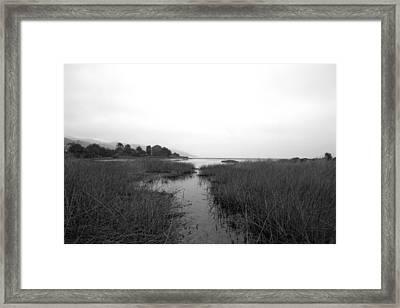 Malibu Lagoon Framed Print by Brad Scott