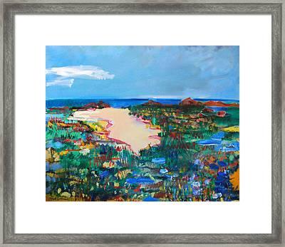 Malibu Marshes Framed Print by Zolita Sverdlove
