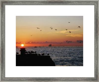 Mallory Square Sunset Framed Print by JAMART Photography
