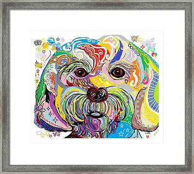 Maltese Puppy Framed Print by Eloise Schneider