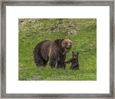Mama Just Don't Move Framed Print