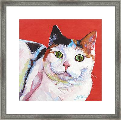 Mama Kitty Framed Print