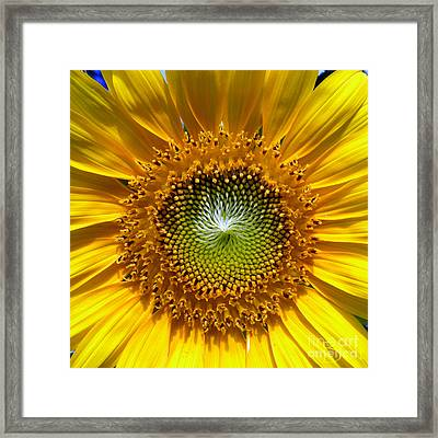 Mama's Favorite Too Framed Print