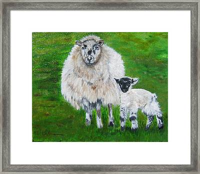 Mamma And Baby Sheep Of Ireland Framed Print by LaVonne Hand
