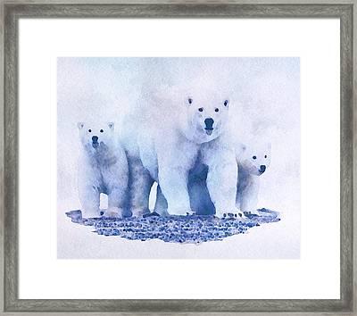 Mamma Bear  Framed Print