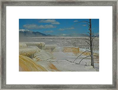 Mammoth Hot Springs Terrace In Yellowstone National Park Framed Print