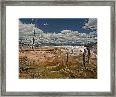Framed Print featuring the photograph Mammoth by John Gilbert