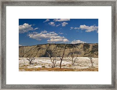 Framed Print featuring the photograph Mammoth Springs Sentinels by Charles Kozierok