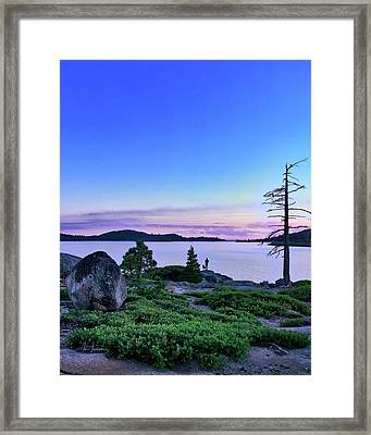 Man And Dog Framed Print