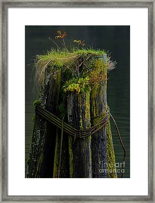 Man Made Island-signed-#2127 Framed Print