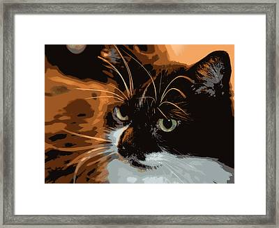 Man Of The Hour Framed Print by Dianne Cowen