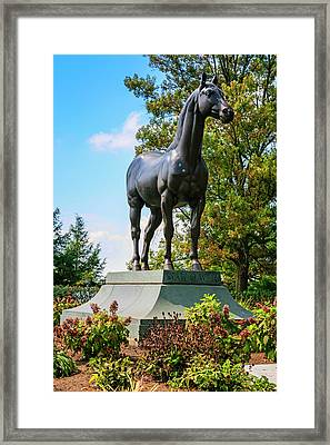 Man Of War Framed Print by Chris Smith