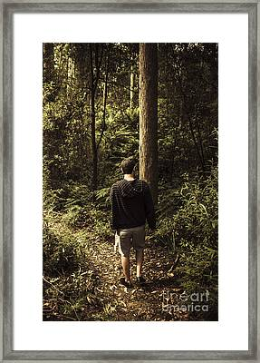 Man On Bush Walk Through North Tasmanian Forest Framed Print