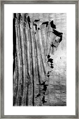 Man On The Move #18, B-w, Sat--5sep2015 Framed Print