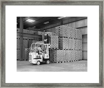 Man Operating Forklift, C.1960s Framed Print by H. Armstrong Roberts/ClassicStock